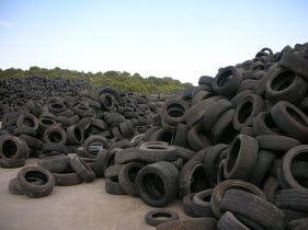 Neumáticos input